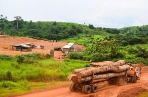 Area di stoccaggio legname, Congo, foto di jbdodane su Flickr, licenza CC.