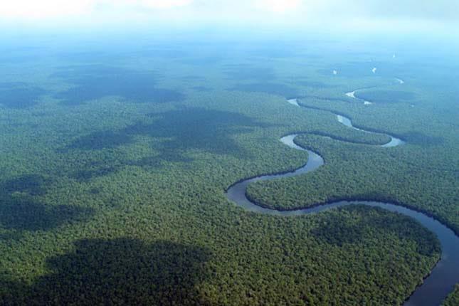 Bacino del Congo, foto su licenza CC.