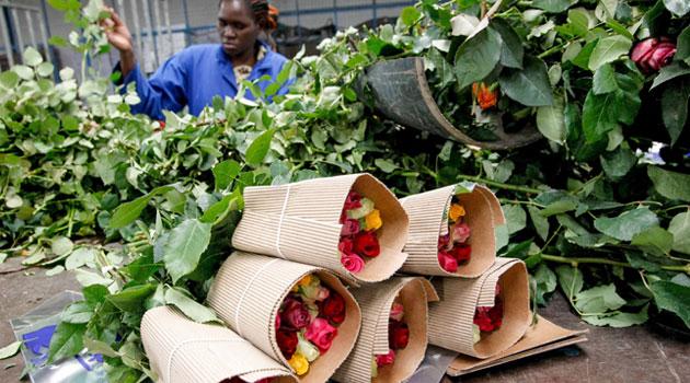 Mercato dei fiori, Kenya, foto su licenza CC ripresa da Pambazuka.