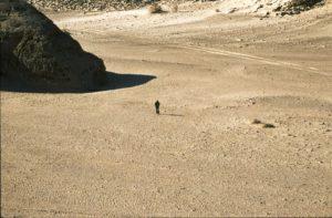 Penisola del Sinai. File dell'autore יגאל פארי. Wikimedia Commons.