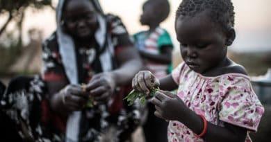 Profughi e rifugiati, è l'Africa che ne accoglie il numero più alto