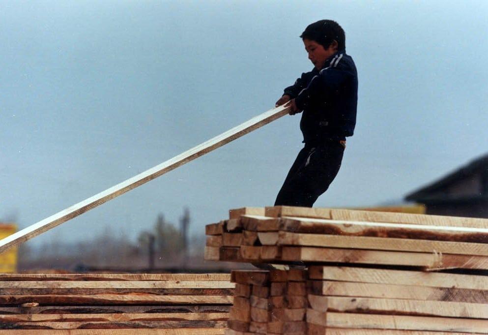 Lavoro minorile in Mongolia. Foto dell'utente Flickr CIFOR. Licenza CC.