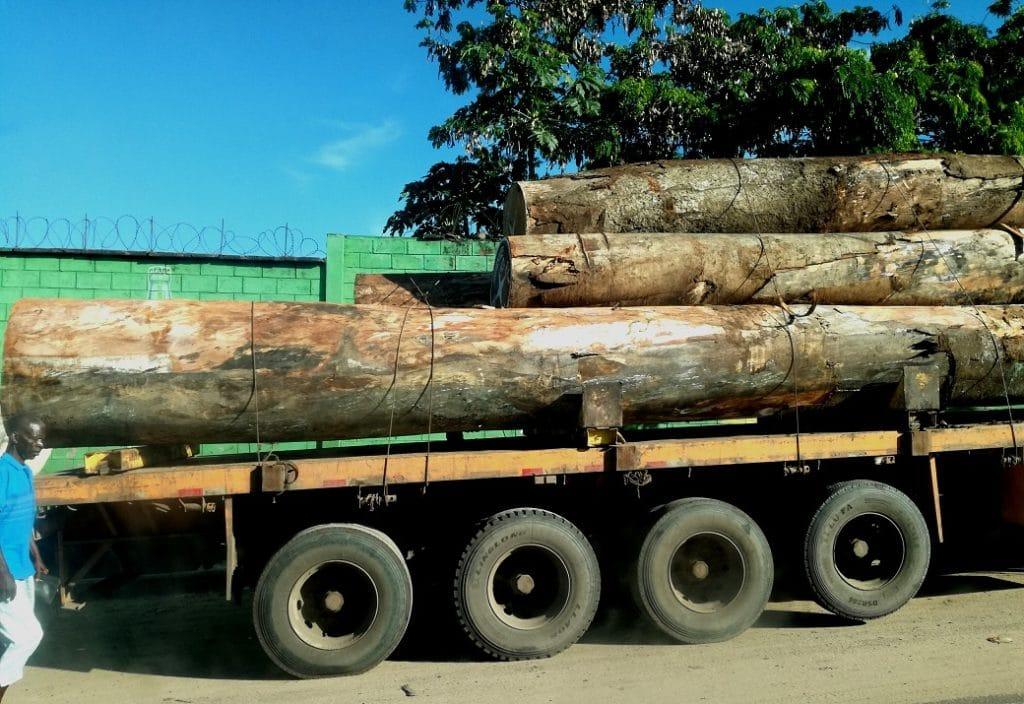 Un camion che trasporta tronchi di alberi molto probabilmente provenienti dalle foreste della regione dell'Equatore arrivati fino a Kinshasa via fiume Congo e diretti al porto di Matadi.