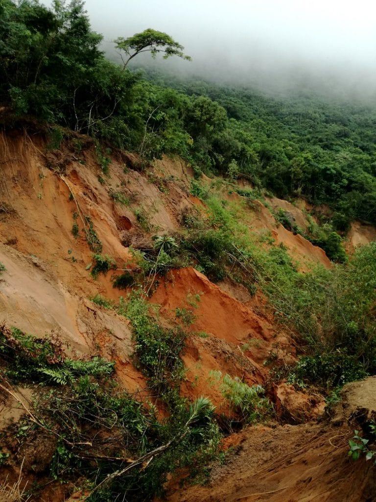 L'effetto dell'erosione causata dal taglio di parte degli alberi: la voragine continua ad ingrandirsi con le piogge e rischia di inghiottire l'intera foresta.