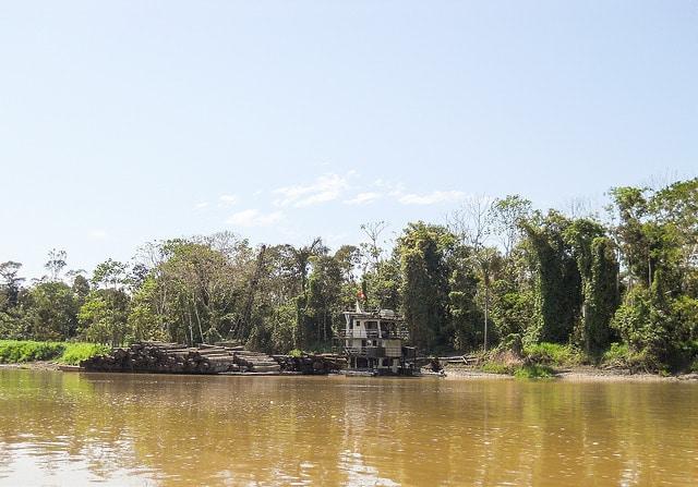 Taglio alberi illegale nella foresta amazzonica. Foto in Flickr-Creative Commons - jpc.raleigh