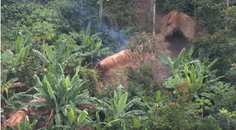 Villaggio di una tribù incotattata nella foresta amazzonica. Survival International - YouTube