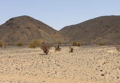 Bisogno d'acqua. Il cambiamento climatico e i danni nel Sahel