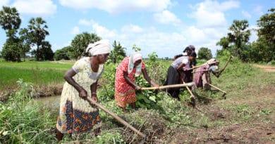 Crisi climatiche ostacolo al progresso verso la parità di genere