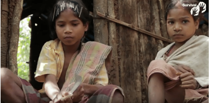 Bambini indigeni in India - Da video Survival