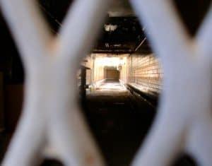 Foto dell'utente Flickr Steve Mays - rilasciata in Licenza CC