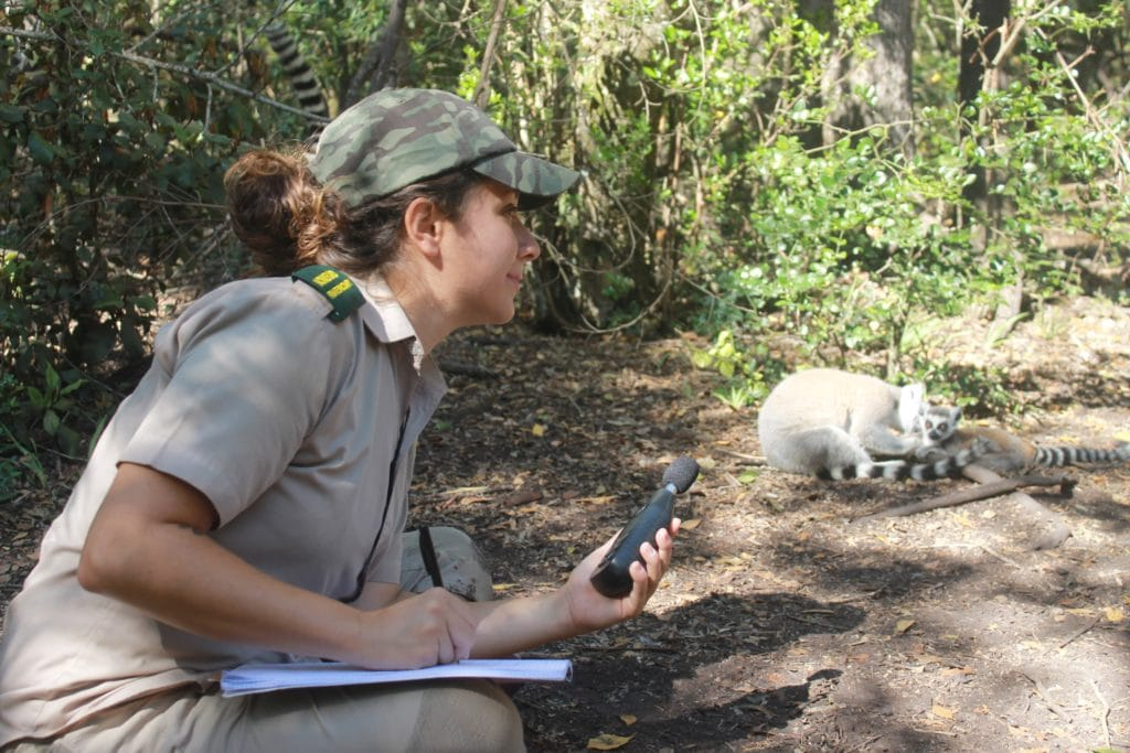 Chiara durante le ricerche di benessere animale con i lemuri in un VERO santuario in Africa dove non era possibile interagire con gli animali