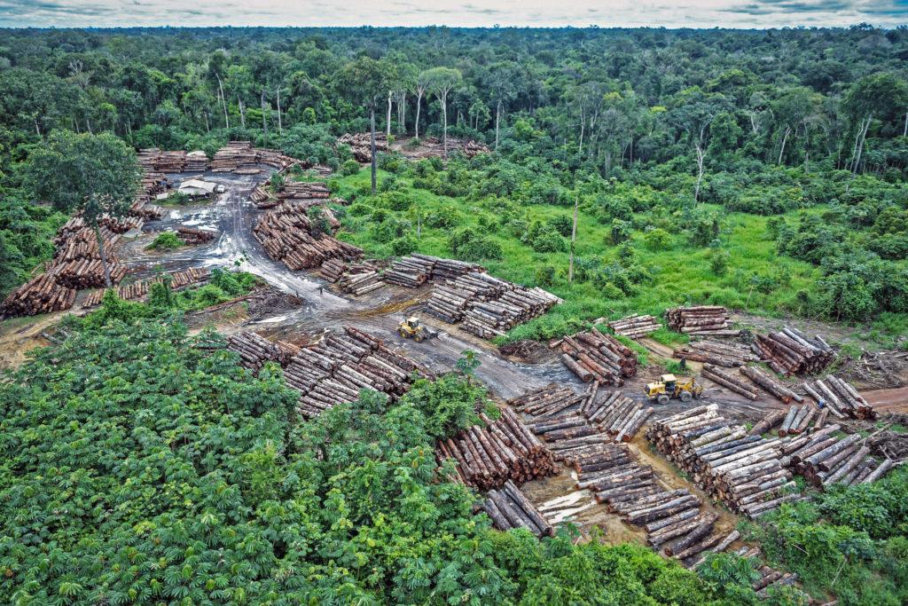 Deforestazione illegale nella Foresta amazzonica - Flickr Creative commons - quapan