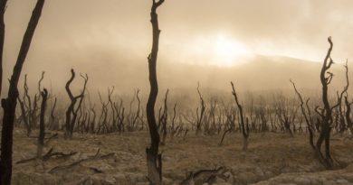Il pianeta Terra è a pezzi, all'uomo la parte di carnefice e vittima