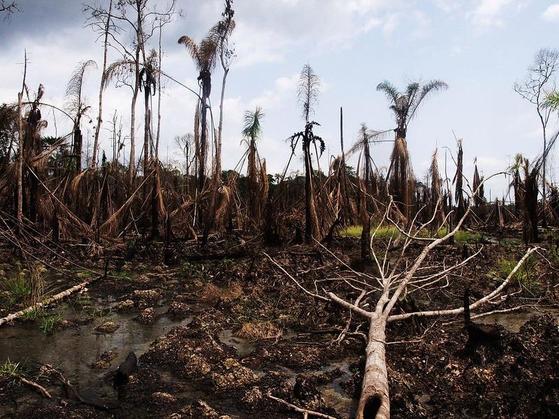 Disastro petrolifero nel Delta del Niger, foto di Sosialistisk Ungdom, Flickr.