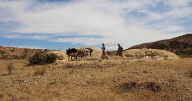 Terra e diritto di proprietà in Africa, Il caso di Eritrea e Ghana