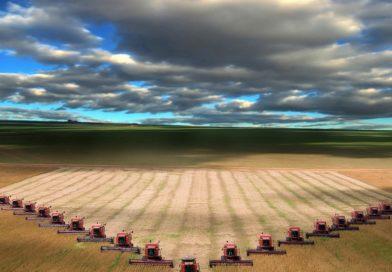 Ambiente, i danni alla terra delle 'erbe cattive' create dall'uomo