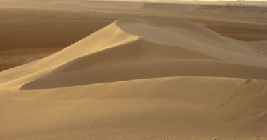Ambiente: estrazione della sabbia, grido d'allarme per l'ecosistema