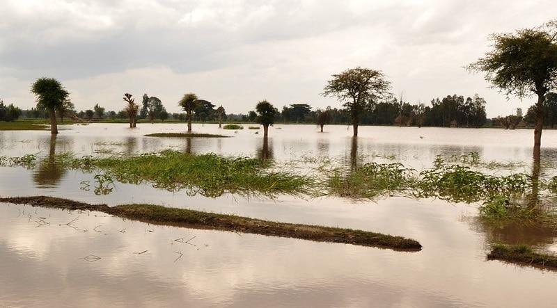 Inondazioni - Pixabay - Foto Credit Commons