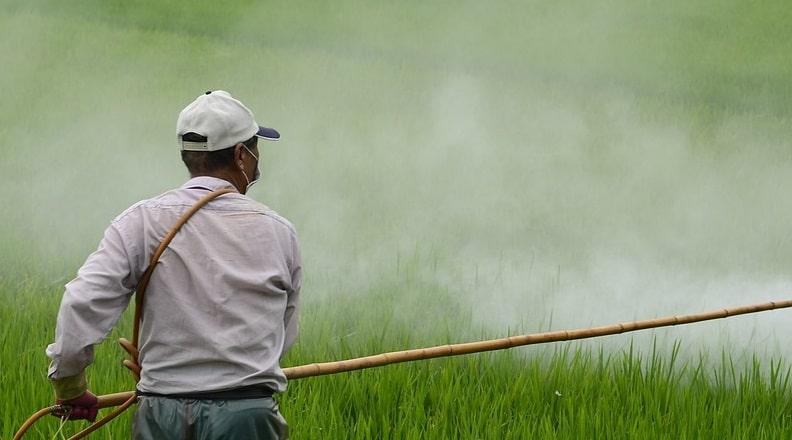 Erbicidi in agricoltura - Pixabay